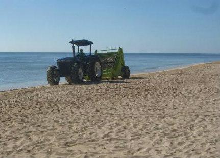Playa del Carmen seaweed cleanup